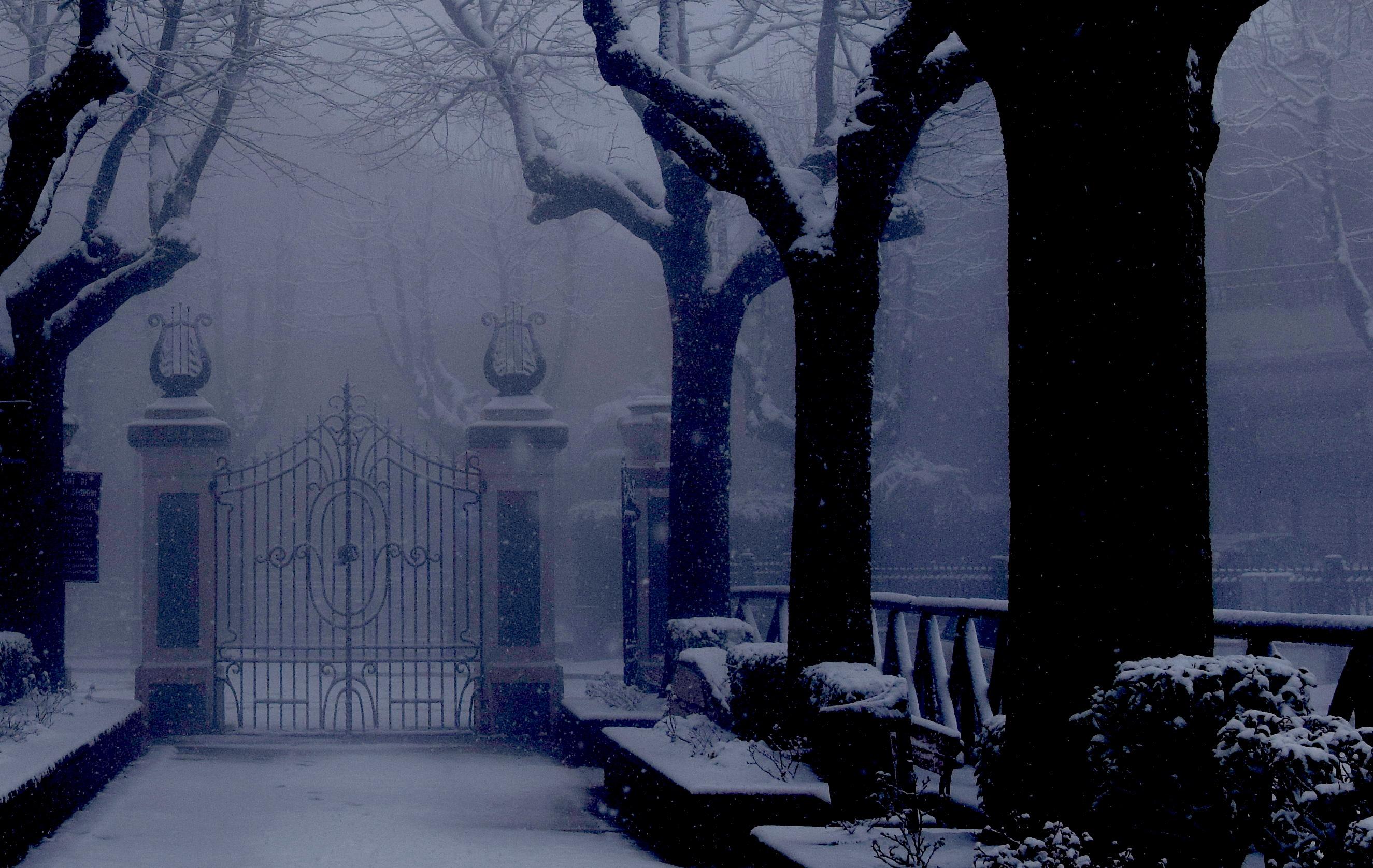 Non aprite quel cancello! di s_ornella