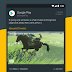 Talon for Twitter (Plus) v6.9.4 [Patched]