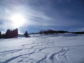 Photo: Graubünden, Stierva - Spuren im Schnee