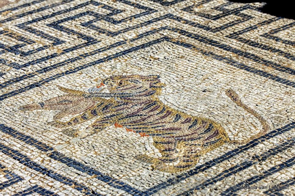 Mozaïek in Romeins huis Volubilis