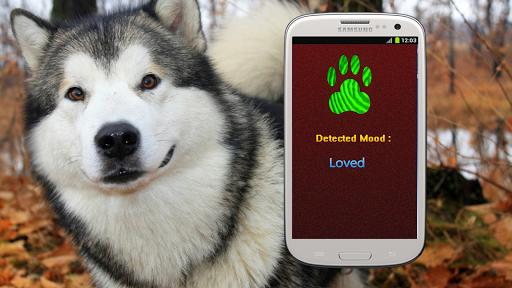Dog Mood Scanner Detector