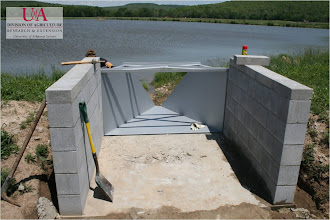Photo: Construction of flume and monitoring station at pond site (5-5-11)