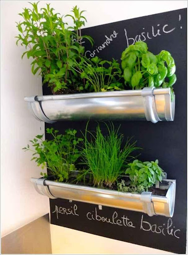 DIY Planters Design Ideas