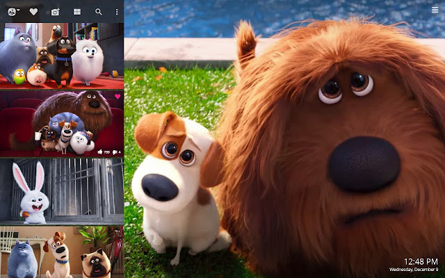 The Secret Life Of Pets Hd Wallpapers New Tab