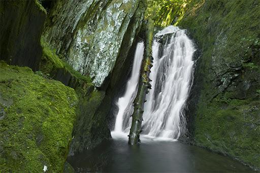 Tannery Falls - Massachusetts