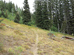 Photo: Trail passed through a number of meadows