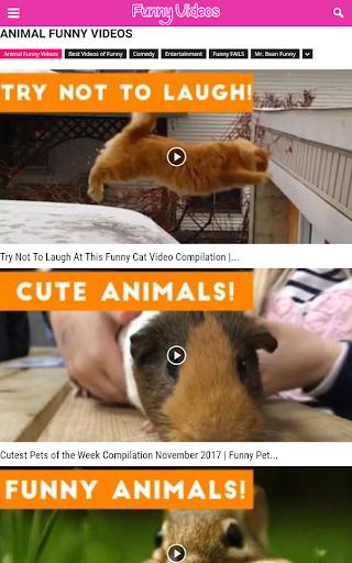 Top Funny Videos HD 1.4 screenshots 6