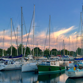 Chichester marina  by Bela Paszti - Transportation Boats ( england, sussex, uk, iphone, sussexlife, chichester,  )
