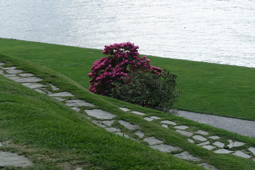 Глицинии и камелии. Азалии и рододендроны. Апрель на озере Комо, и также Монца и Милан.