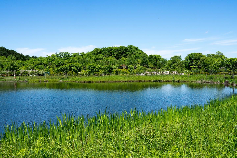 空を映し出す池