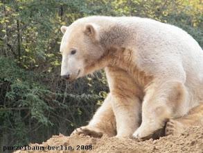 Photo: Der Sandhaufen wird genauer untersucht ;-)