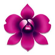 ? Orkide Bakımı nasıl yapılır ?
