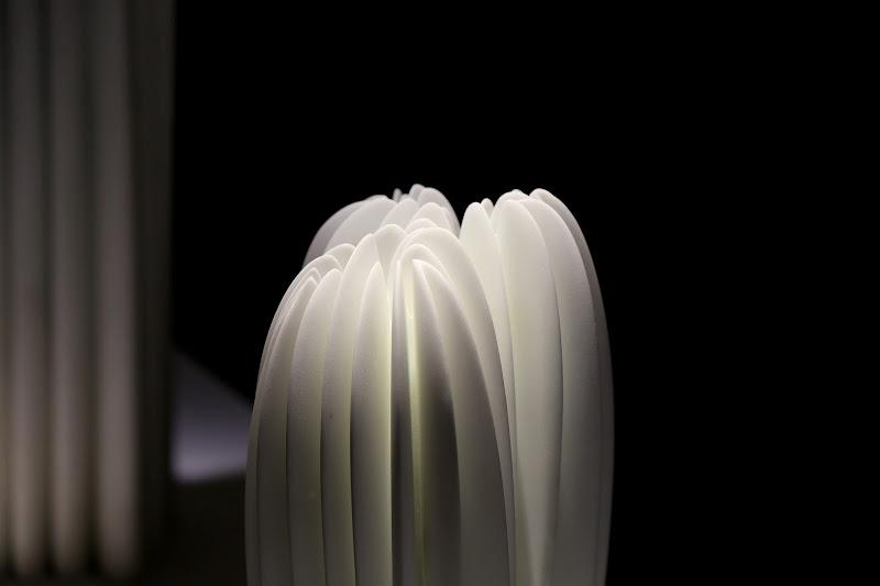Petali di marmo in controluce di Dama
