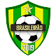 Download Brasileirão 2019 PRO For PC Windows and Mac