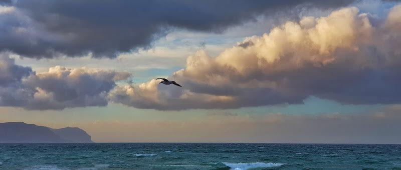 nuvole per caso di francy500