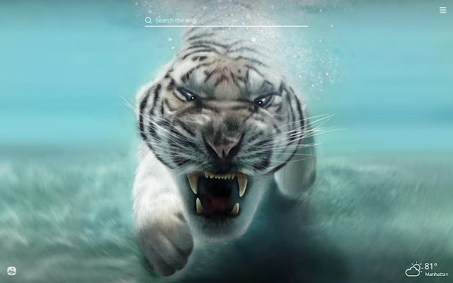 Cool Animals HD Wallpapers New Tab Theme
