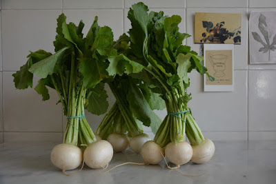 The sweeter side of turnips.