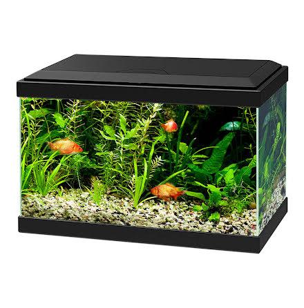 Ciano Aqua 20 Akvarium Svart
