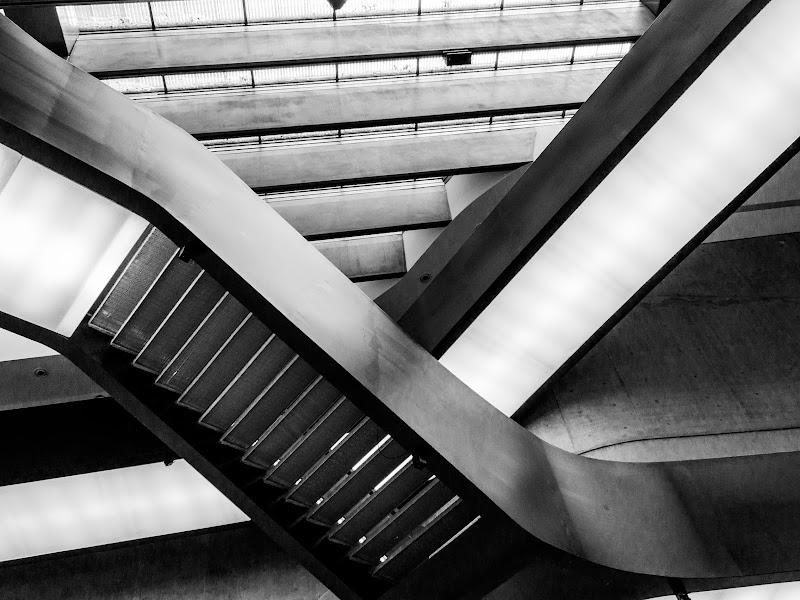 Intreccio di scale di rita_bacchiddu