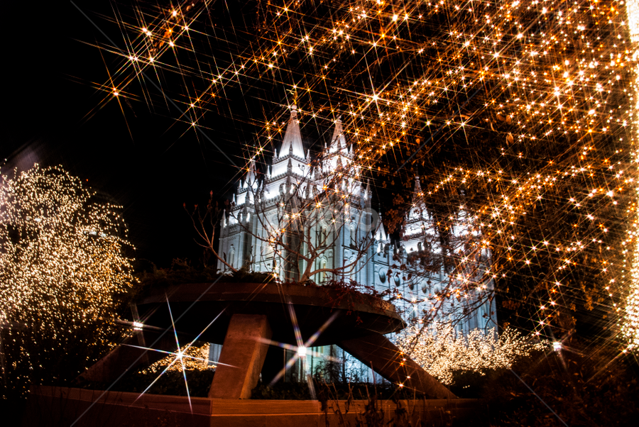 Stars over the temple by Kyley Hansen - Public Holidays Christmas ( lights, winter, cold, joy, snow, christmas, happiness )
