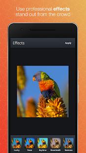 Aplikace Quick Gallery - Photo Editor GU71B1KCRp-V-lIPxAeu14Ipr1hN61voHy73Df9837Xzip83NJoZ8q2H6dxlWhaGv04=h310