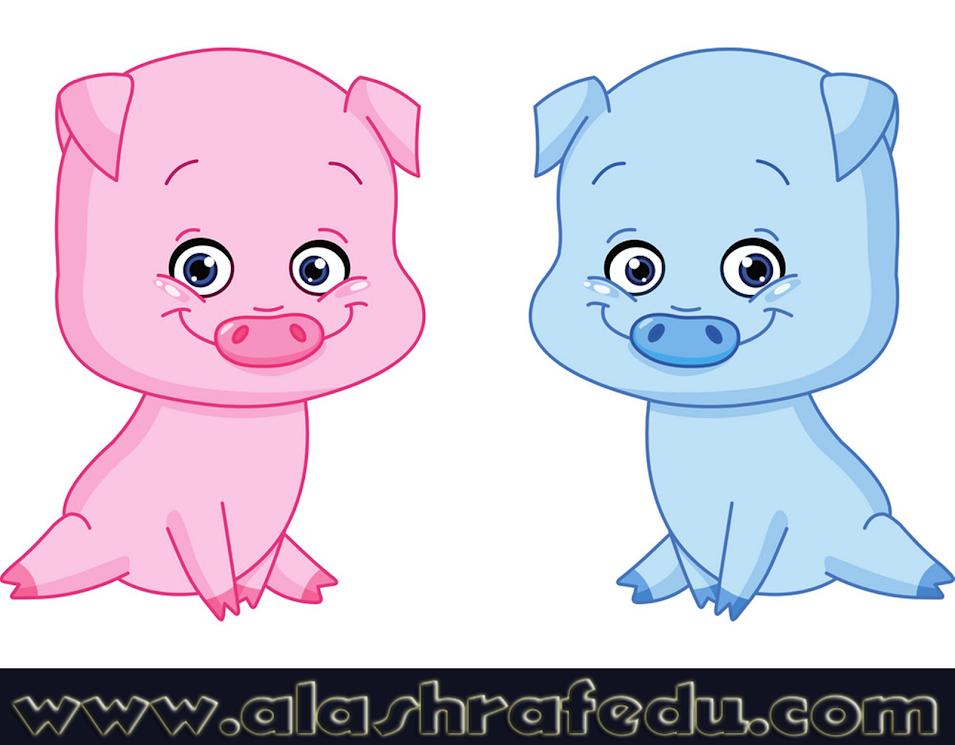 Baby Pigs gUbF-AjhR3mlAh00eBxe