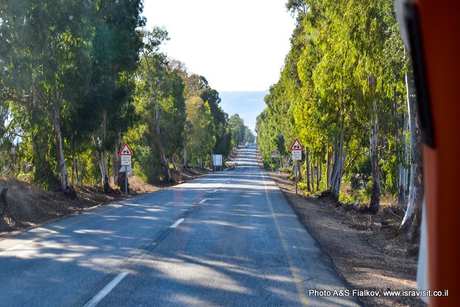 Дорога. Пейзажи Израиля.