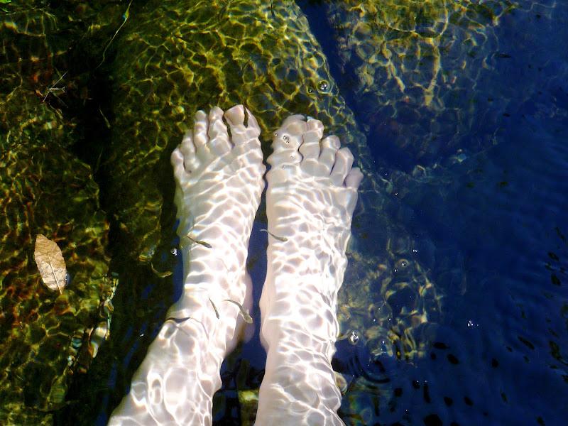 Relax nella natura di Jo_74