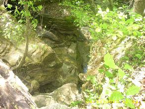 Photo: Where the creek  flows