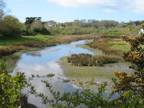 Photo: Derrière la petite digue en avril