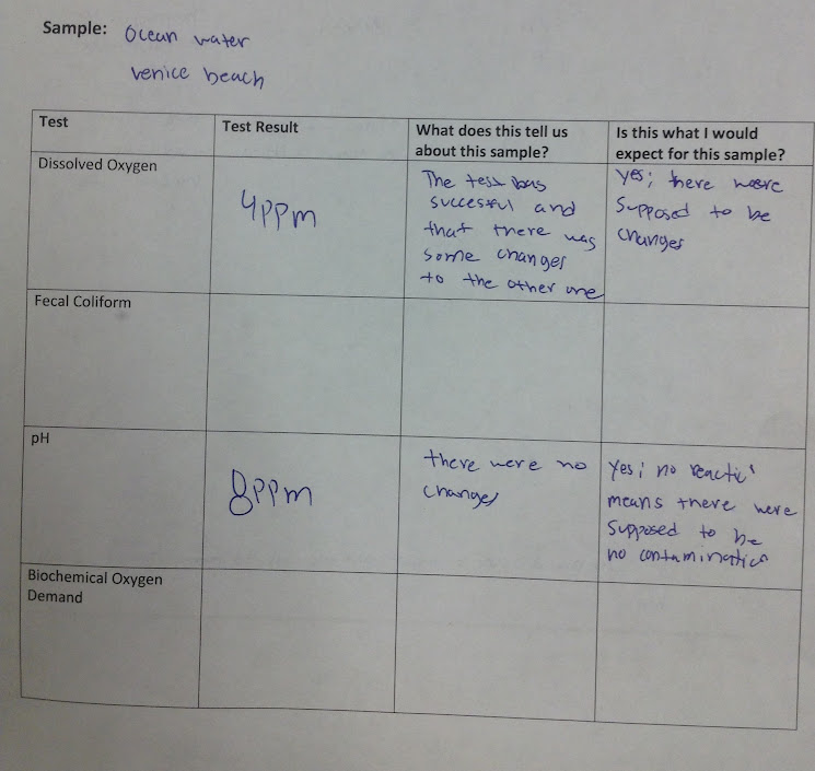 lesson plan reflection roman tables Reflection lesson plan, chapter 30 reflection and  bakery middle school text features enlargements faviconico constructing two way tables roman mosaics.