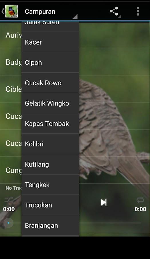 Kicau Burung Lengkap — Android lietotnes pakalpojumā Google Play
