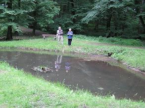 Photo: C6080025 Obora - Arboretum Bramy Morawskiej