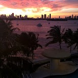 gorgeous sunset in Miami in Miami, Florida, United States
