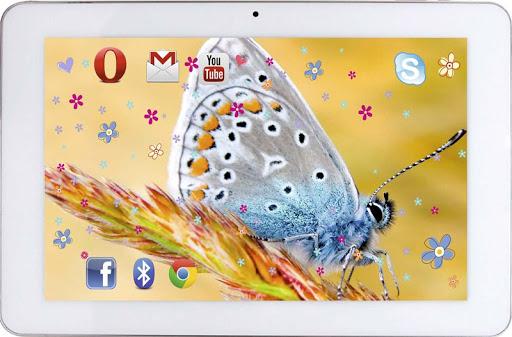 玩免費個人化APP 下載Butterfly Best live wallpaper app不用錢 硬是要APP
