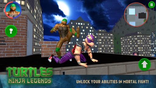 Turtles: Ninja Legends for PC