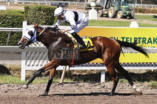 Garota Do Rio (Diamond Tycoon) se adjudica Handicap (1000m-Arena-CHS). - Staff ElTurf.com