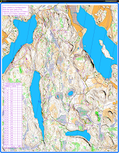 Photo: Karttapullautin map from Salmi recreation area in Vihti - with an orienteering route, and heart rate data (multicoloured line) from a GPS watch