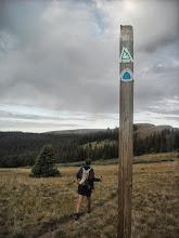 Photo: Ticking away the miles along Colorado Trail segment 22.