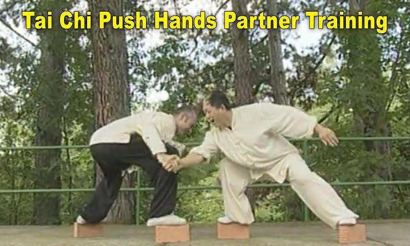 android Tai Chi Pushing Hands Screenshot 5