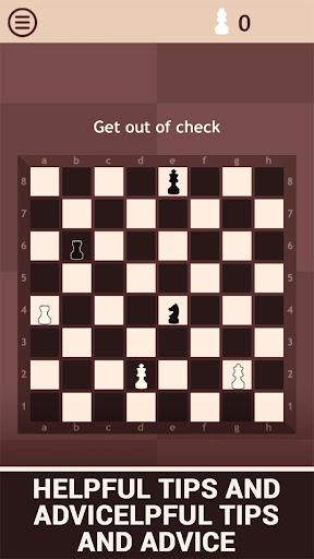 Chess Learn 2: Endgame Study