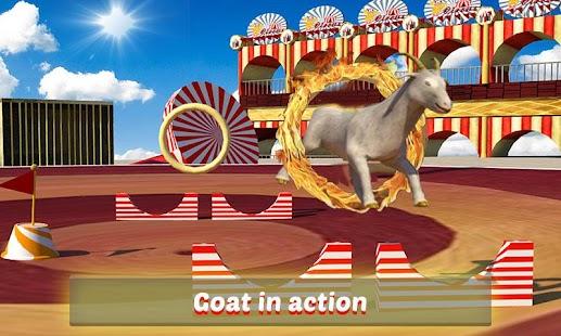 Goat-Monkey-Stunts