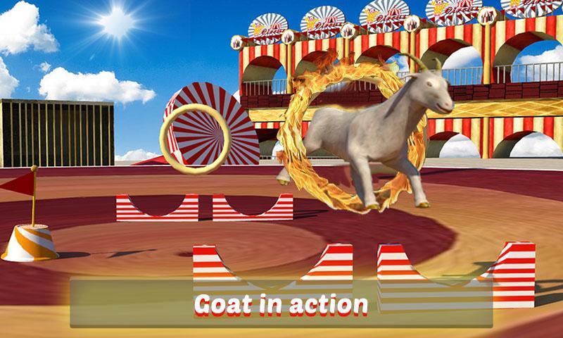 Goat-Monkey-Stunts 18