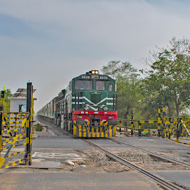 by Mohsin Raza - Transportation Trains