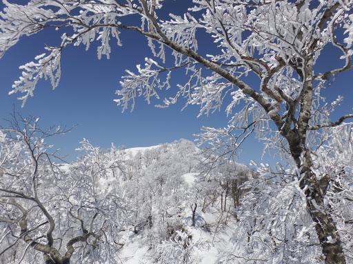 雪山を満喫