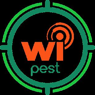 Wipest - náhled