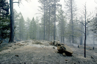 Photo: Hayman Fire South. Burned homes in Thunder Butte subdivision.