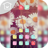 Beautiful white flowers theme