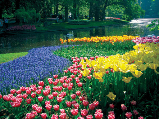 keukenhof-lake-and-gardens-netherlands.jpg - Keukenhof Lake and Gardens in Lisse, the Netherlands.