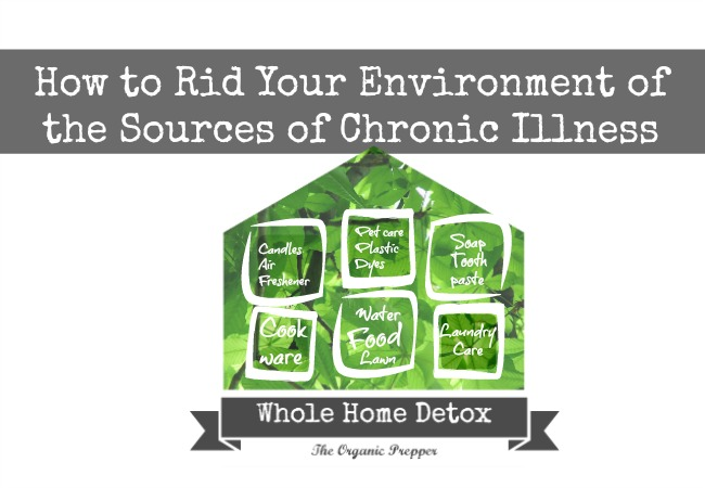 Home Detox: How To Rid Your Environment Of The Sources Of Chronic Illness